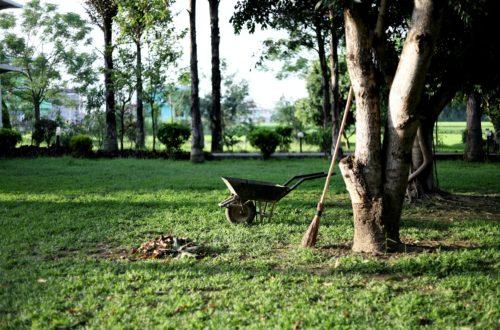 centrum-ogrodnicze-opole